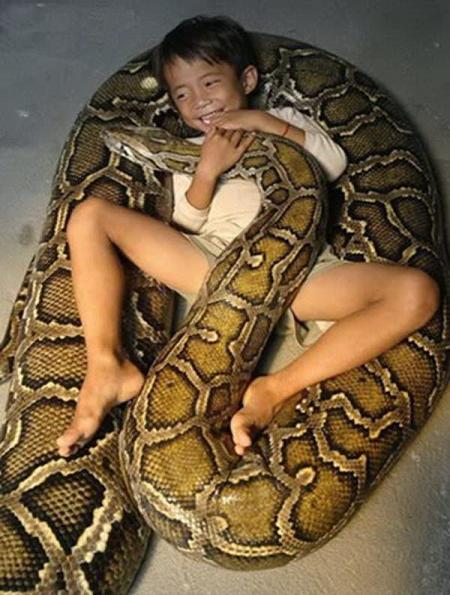 Kid Playing With His Pet Anaconda