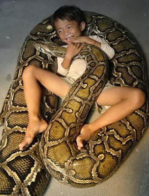 Kid Playing With His Pet Anaconda
