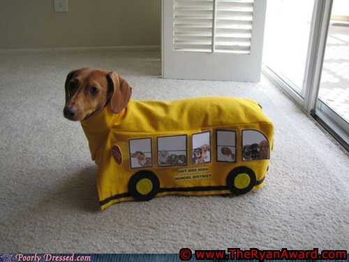 Cute Dogs Halloween Costume - School Bus