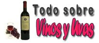Todo sobre vinos y uvas