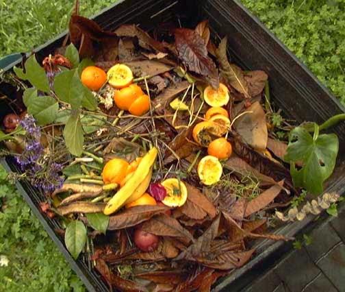 Jardin interior elaborar compost en maceta para tus for Abono para las plantas de jardin