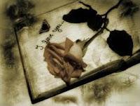 Poesia de amor imagen