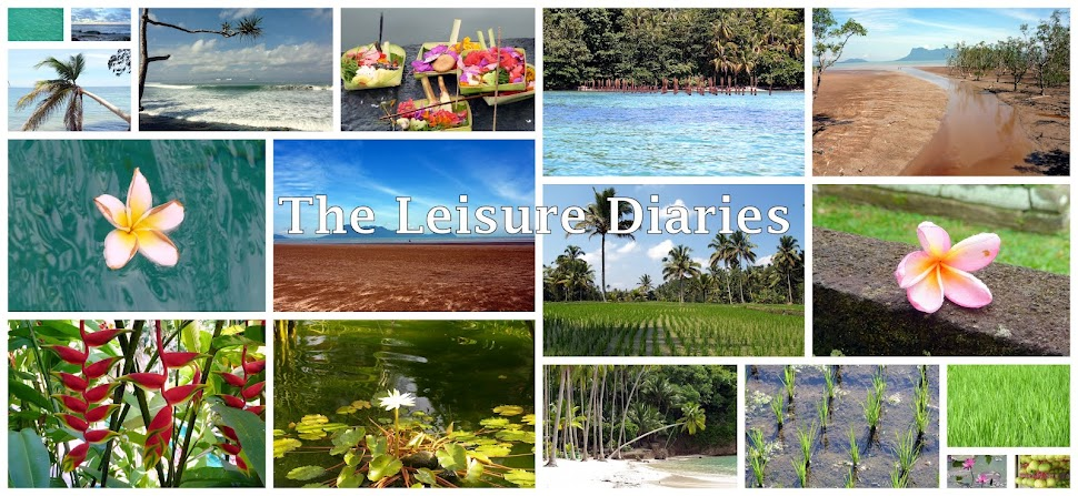 The Leisure Diaries