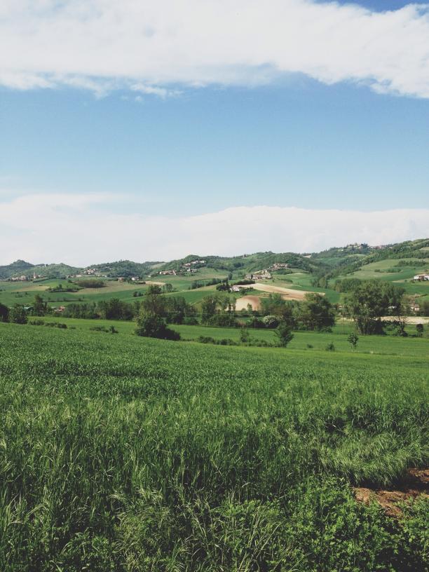 UNESCO, Italia, Moncalvo, Piemonte, Monferrato