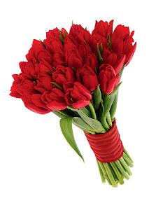 ramo de tulipanes rojo