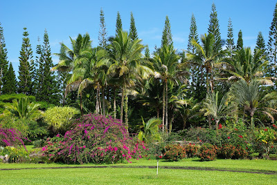 Nani Mau Gardens Hawaii Island