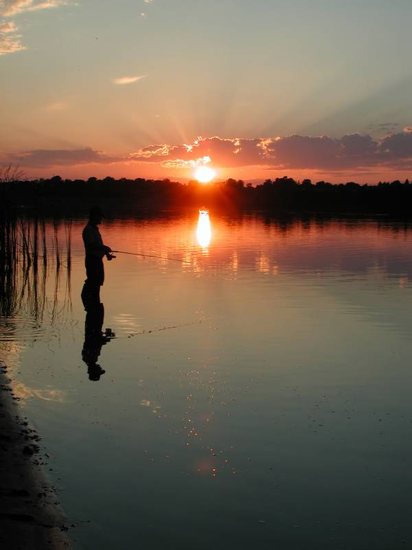 Your postal blog should the post office sell fishing for How much does a fishing license cost