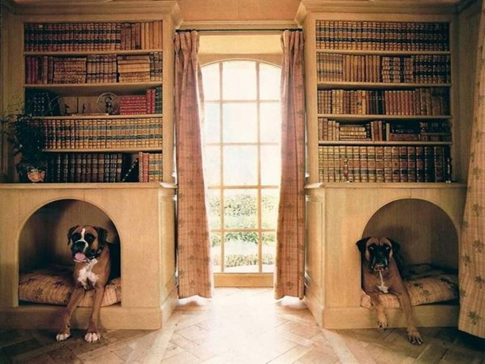 Dwell Of Decor: 15 Modern Indoor Dog House Designs
