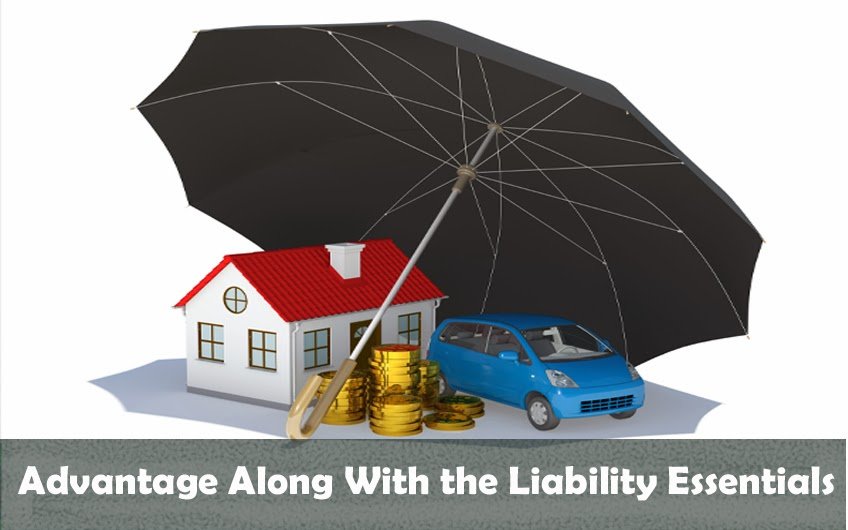 Advantage Along With the Liability Essentials