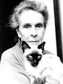 El gato de Leonora Carrington
