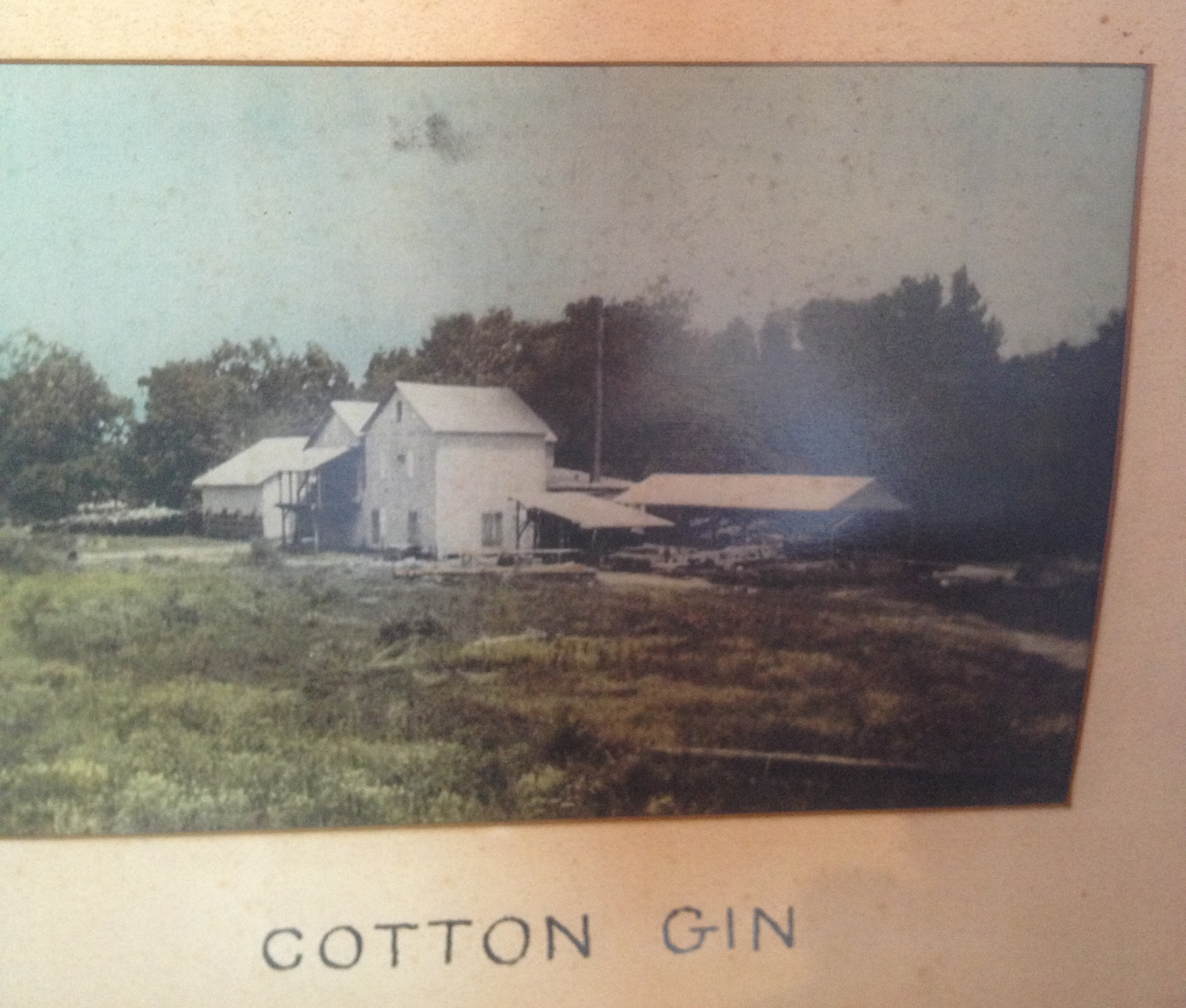 cotton gin essay Although the cotton gin has had many positive effects on the economy of the south, it also had negative effects for the slaves especially in the south.