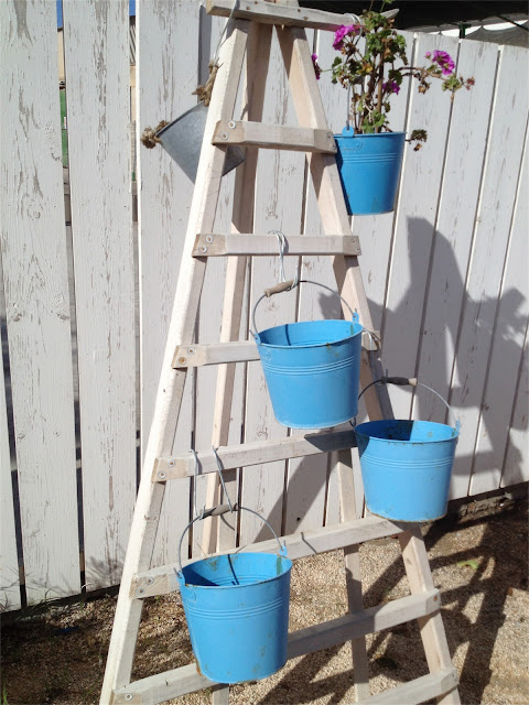 blue buckets ladder flowers Mallorca holidays Liz and Pip Ltd
