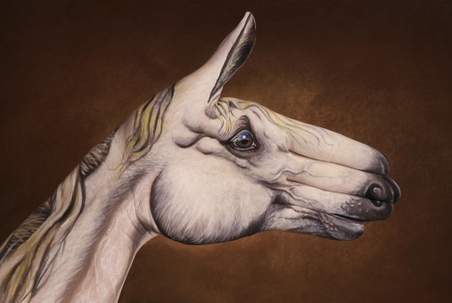 White Horse  hand painting