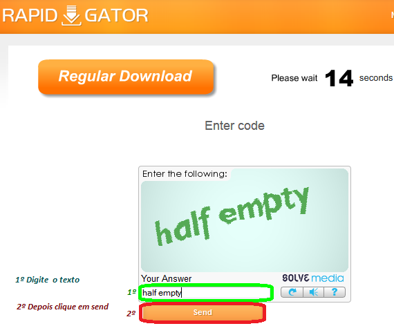 rapidgator not downloading