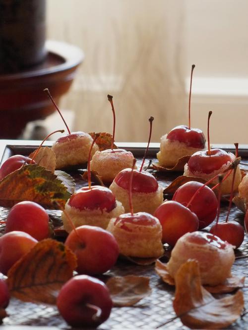 Beiget Kok : Kelihatan daundaunan pokok apple yang sudah kering sebagai pelapik