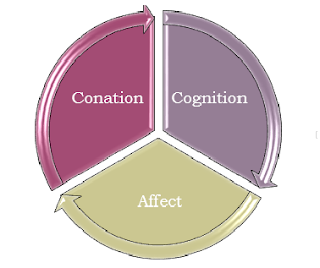3 component of attitudes There are three main aspects of attitudes at work, and in this lesson, we will focus  on  cognitive component of attitude: definition & example affective.