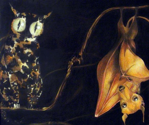 a cat on a perch with the eyes of an owl and a bat hanging upside down with the head of a dog