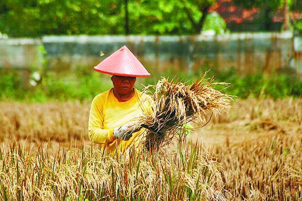 Ekonomi Pembangunan Negara Maju Dan Negara Berkembang