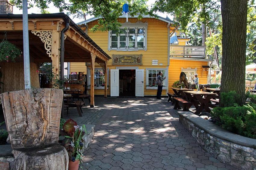 Casa de madeira com espaço de lazer na frente um alpendre e mesas debaixo de uma árvore frondosa. Algumas plantas num canteiro
