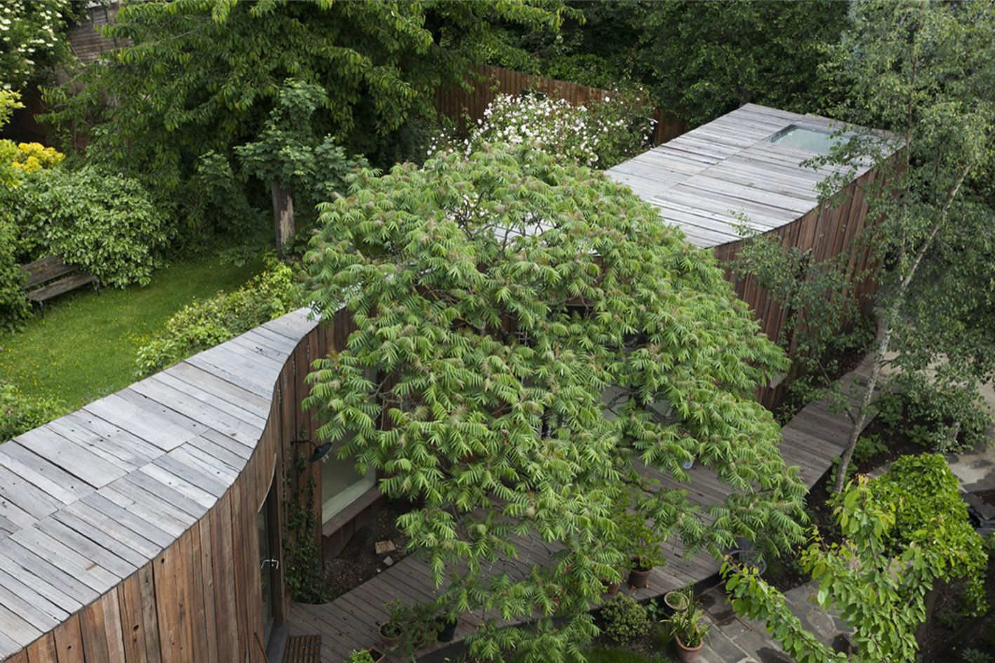 6a architects a f a s i a Architecture nature