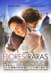 Download Flores Raras RMVB + AVI Torrent DVDRip