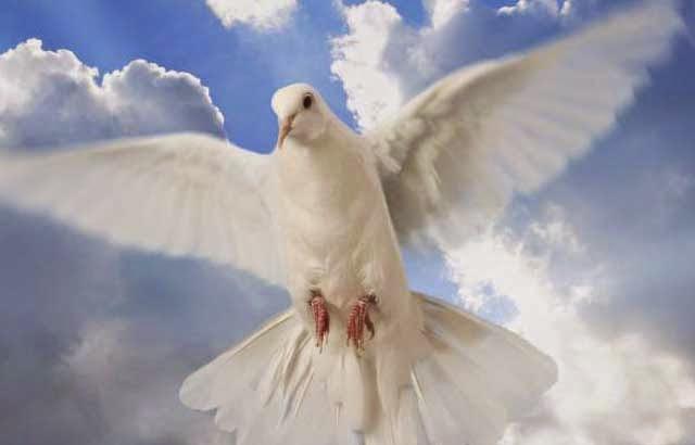Mensagem de Paz - Restaurar a Paz Interior Com o Espírito Santo