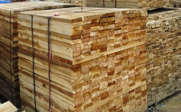 gỗ tràm