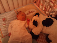 Lily loves Mr Moo.