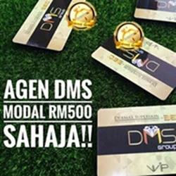 Peluang Bisnes DMS