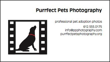 Purrfect Pets Logo and Business Card
