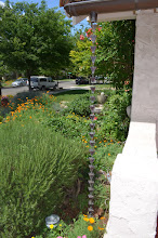 Learn Finishing Touches for Your Landscape Like This Attractive Rainwater Chain