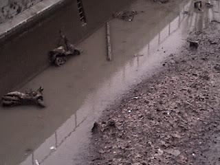 Les vélos et scooters apparaissent sous les eaux