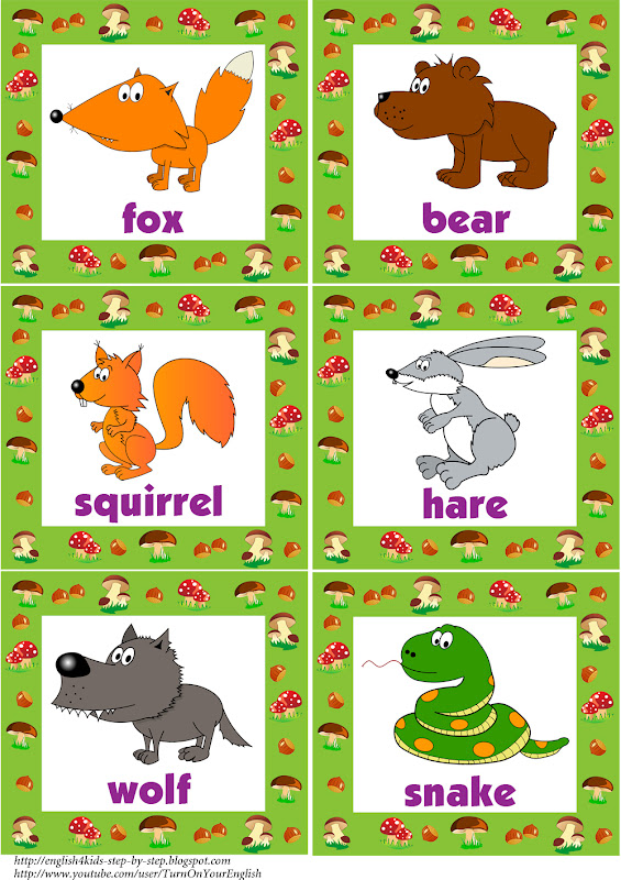 Forest Animals Coloring Pages and Flashcards title=
