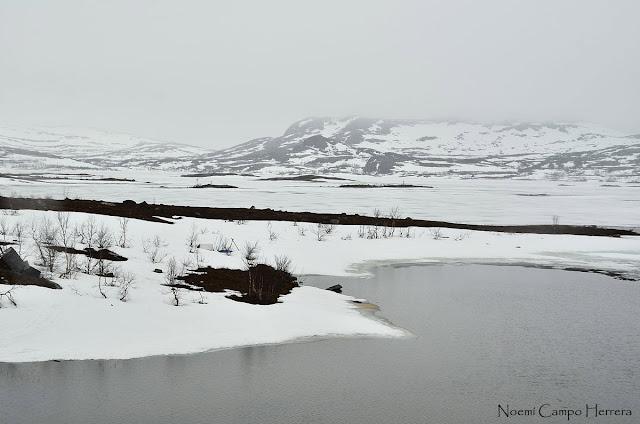 Lago helado en la niebla