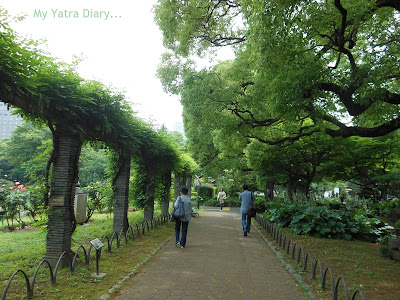 Serene Walk at Hibiya Garden - Tokyo, Japan