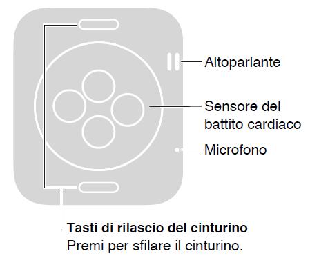 Dove si trova sensore battito cardiaco Apple Watch posizione