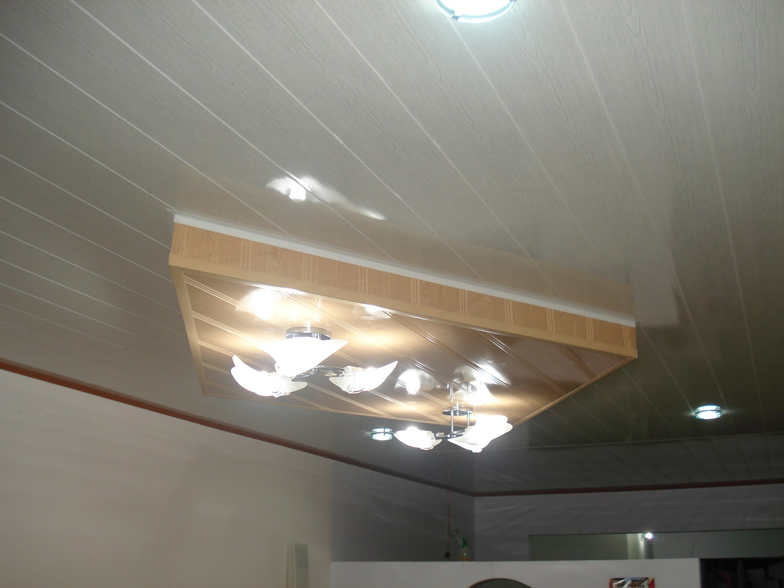 Wilson leon dise os arquitectonicos para sus espacios - Falsos techos pvc ...