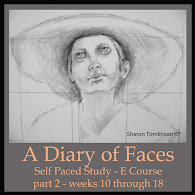 Part 2-Self Paced Study - A Diary of Faces