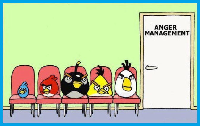 angry birds, anger managment, cartoon, funny pictures