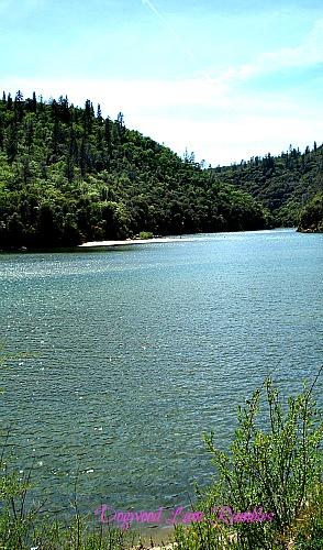 Yuba River dogwoodlanerambles.blogspot.com