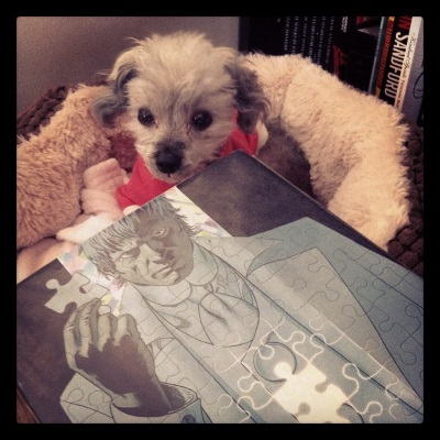 A sleek grey poodle, Murchie, lays in a dog bed with fuzzy, raised sides. He wears a pink hoodie with white trim. In front of him, overlapping the dog bed, is a massive hardcover copy of Absolute Planetary Volume Two. The cover features a puzzle of a white-haired white man dressed in a white three-piece suit. He brandishes a puzzle piece that fits a blank space in the middle of his chest.