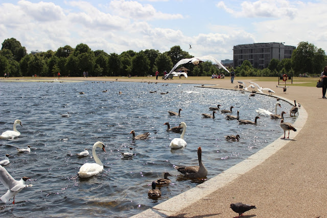 The Round Pond at Kensington Gardens | Chichi Mary Blog