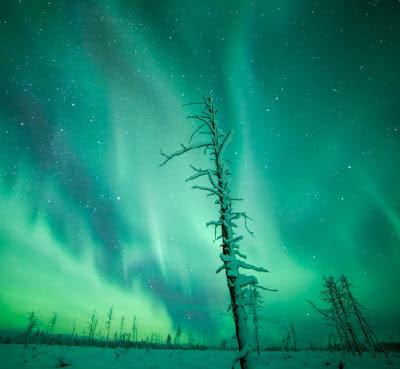 Auroras boreales sobre Muonio, Finlandia