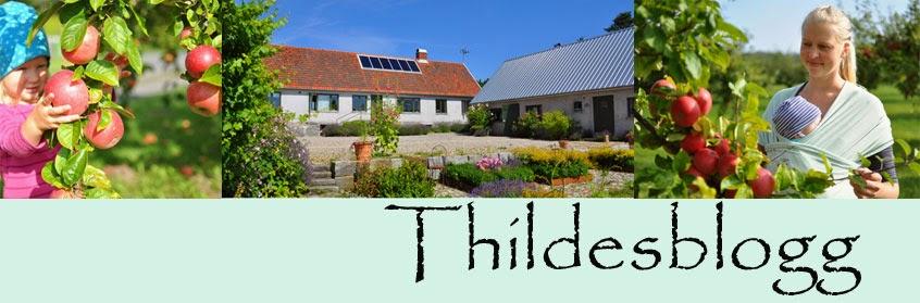 Thildes blogg