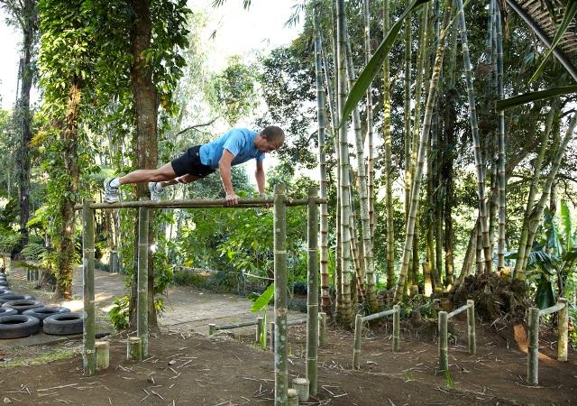 Backyard Jungle Gym Plans : The Jungle Gym Cake Ideas and Designs