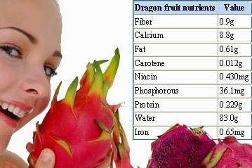 Manfaat Buah Naga Untuk Kesehatan Tubuh Manusia