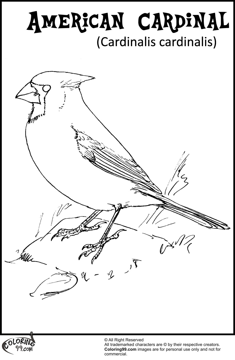 az cardinals coloring pages - photo #29