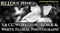 Lightroom CC Workflow: Black & White Floral Photographs | Photo Retouching Tutorial