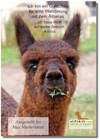 Alpaka Gutscheine