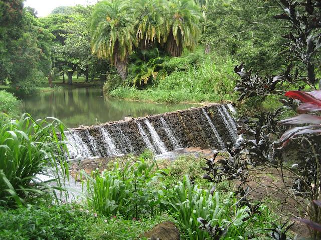 Brindavan In The Bay Area National Tropical Botanical Garden In Kauai